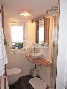 Waschtisch WC-Spiegelschrank