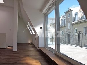 Fenster Dachwohnung Hebe Schiebetüre